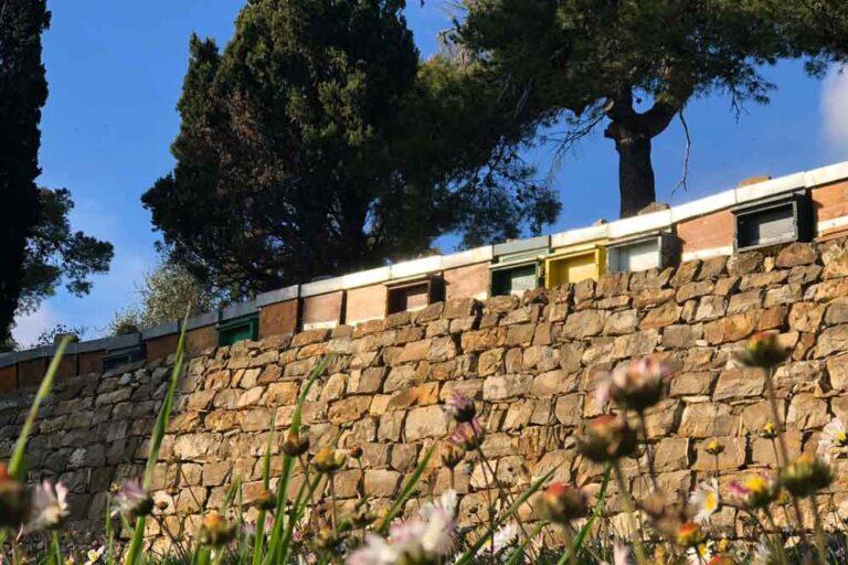 Italien Bienen Crowdfarming